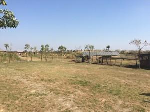 Rural Fengxian