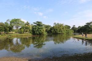 Lake at Botanic Garden